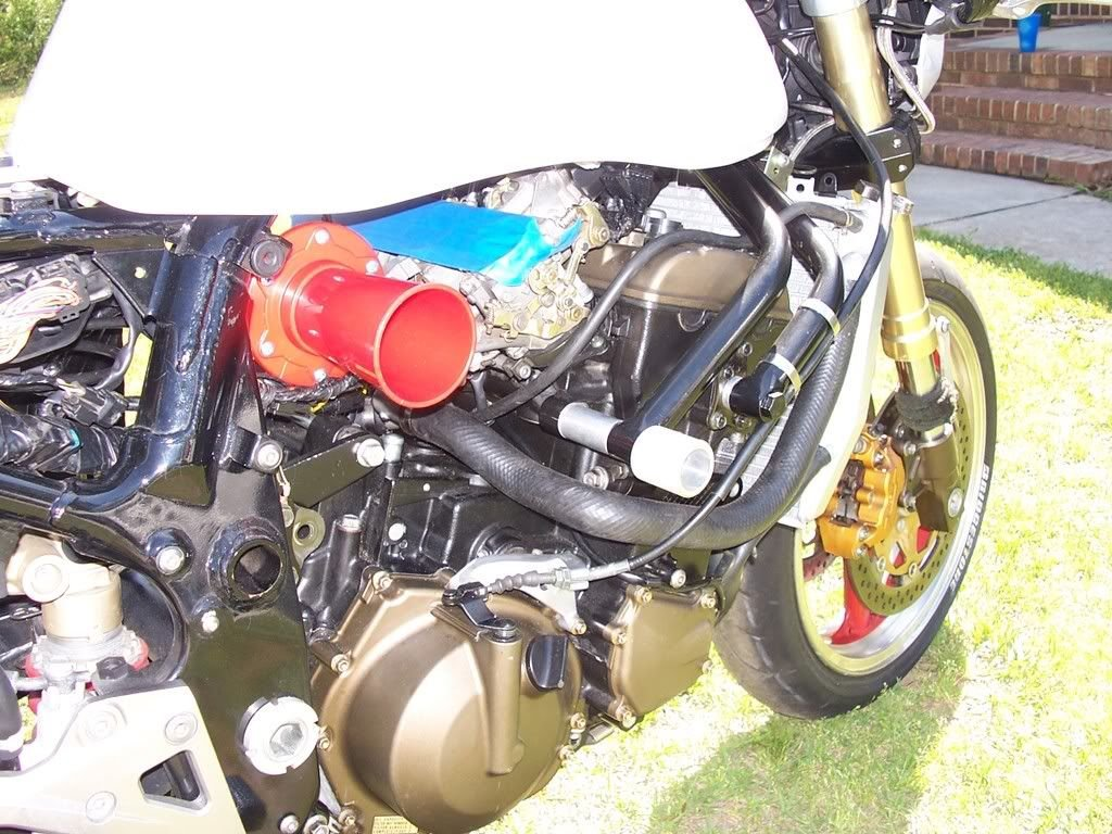 zx10r engine swap(Z-King) 80% done with new pics